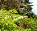 posjet-arhivu-i-vrtovima9